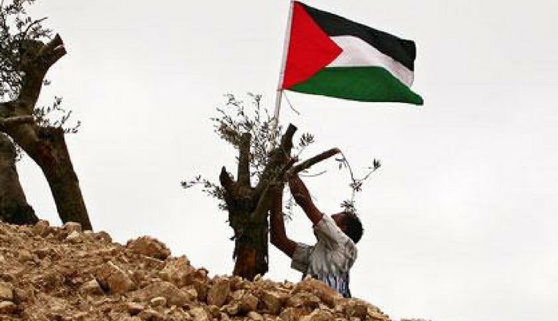 42 years since Land Day, Palestinians still enduring destruction, displacement